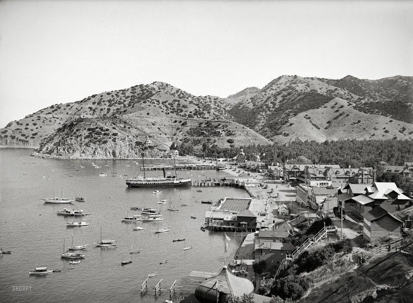 Avalon Bay: 1915