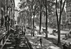Shady Saratoga: 1915