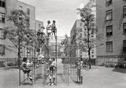 The Asphalt Jungle Gym: 1941