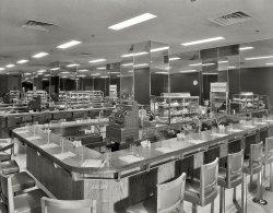 Lobster Salad Sandwich: 1953