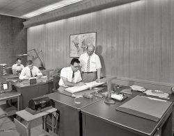 Ledkote: 1956