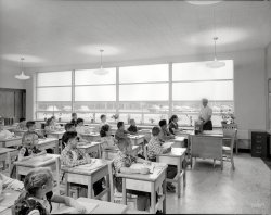 Forest Brook: 1956