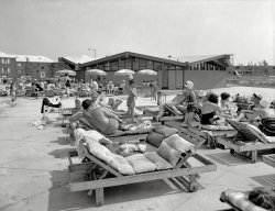 Lindenwood Village: 1959