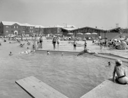 Midday at the Oasis: 1959