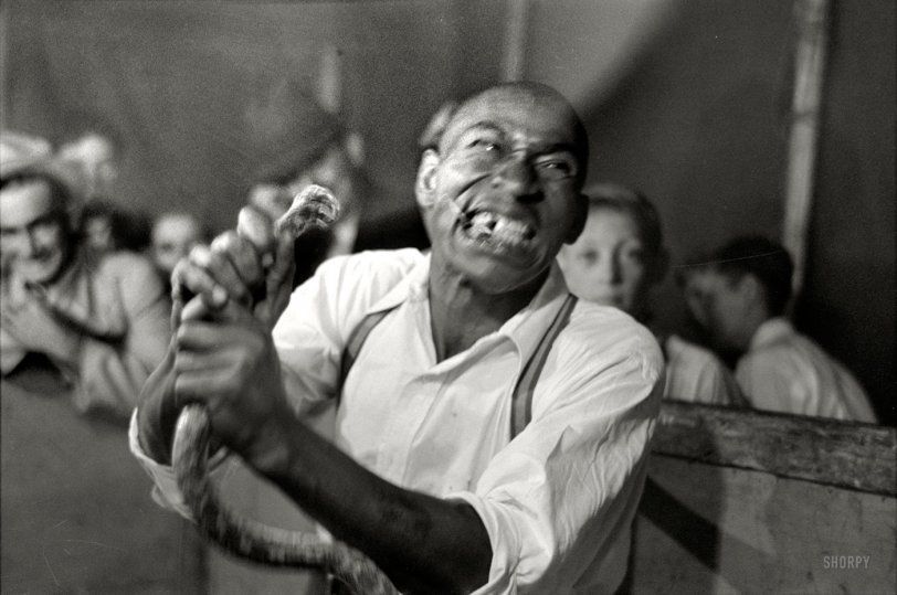 Snakebite: 1938