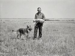 Animal Farm: 1936