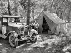 Fruit Tramps: 1936