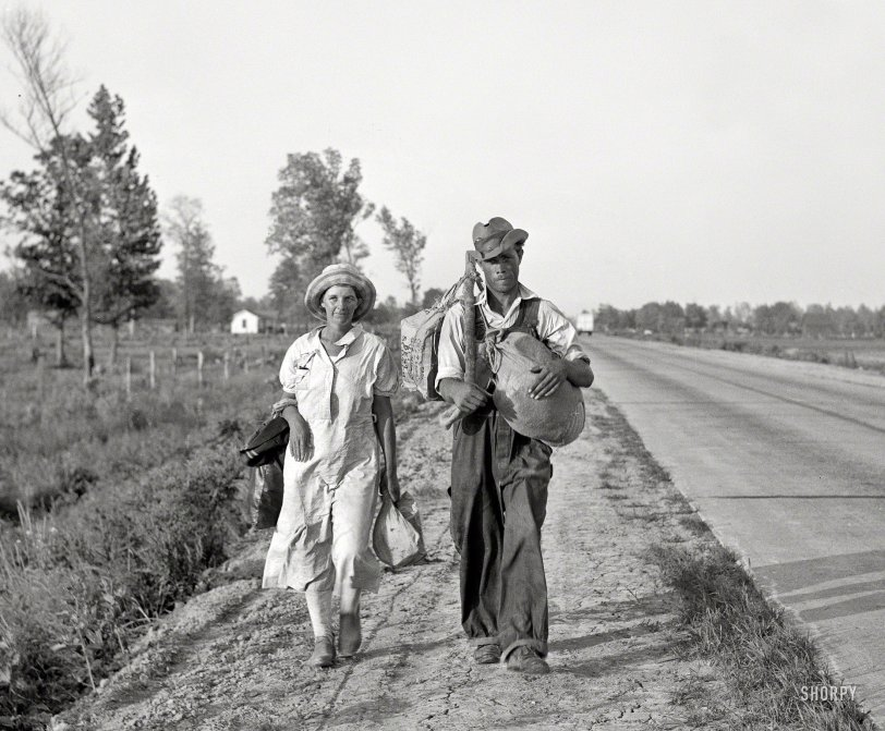Doesn't Cotton: 1936