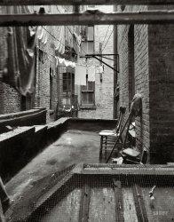 Rear Window: 1936