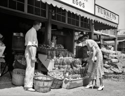 Pineapples on Parade: 1936
