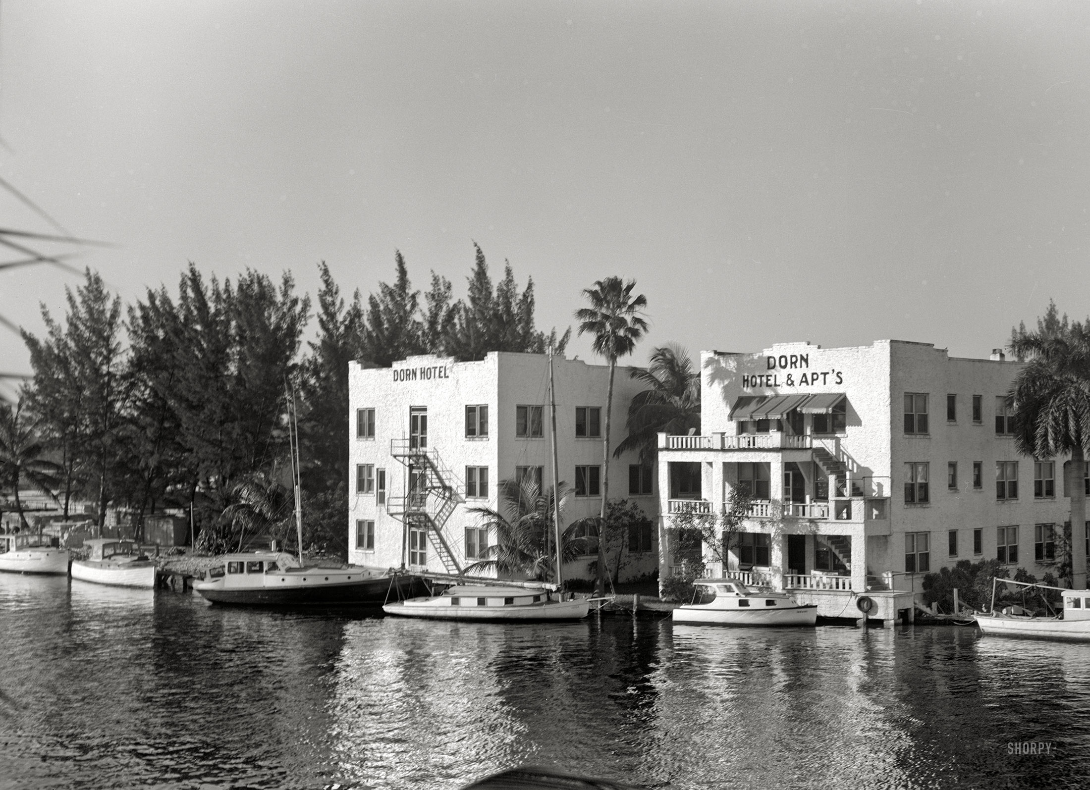 ... medium format nitrate negative by the mysterious daly click image