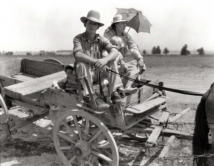 Parched Okies: 1939