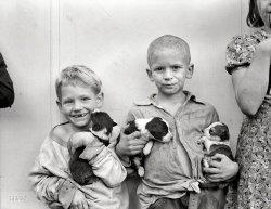 Lucky Pups: 1938