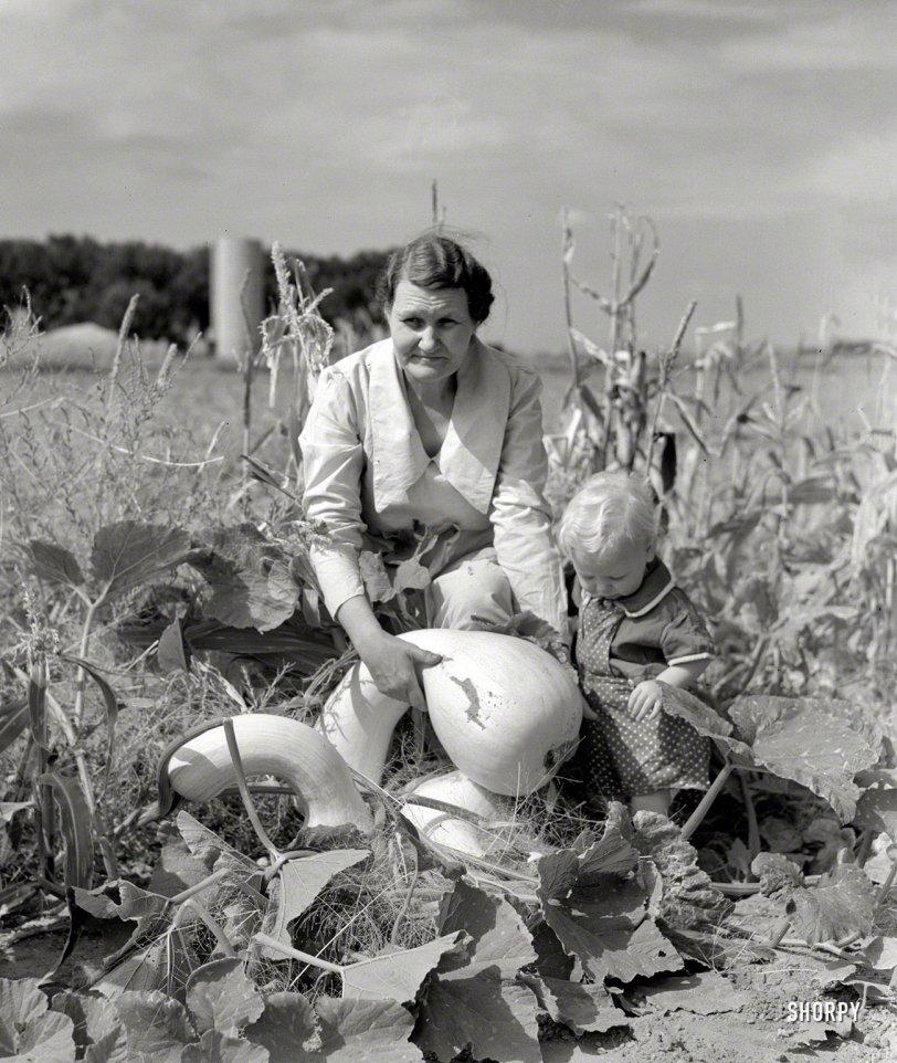 Baby Squash: 1939