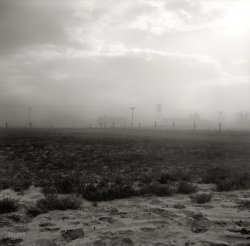 Dust in the Wind: 1937