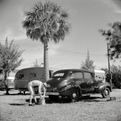 Pale Driver: 1941