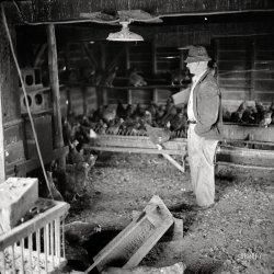 Mr. Mambert: 1941