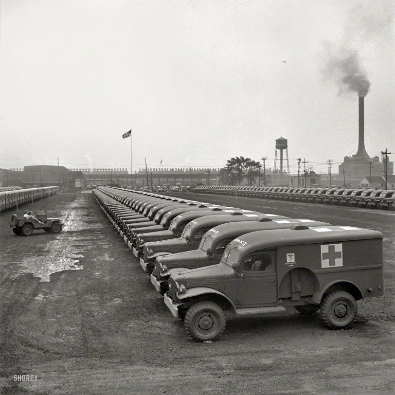 Army Ambulances: 1942