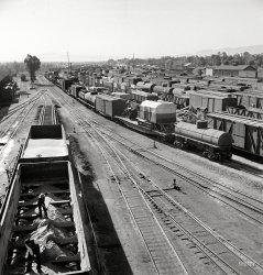 Needles: 1943