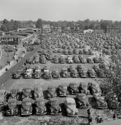 A Crowded Field: 1943
