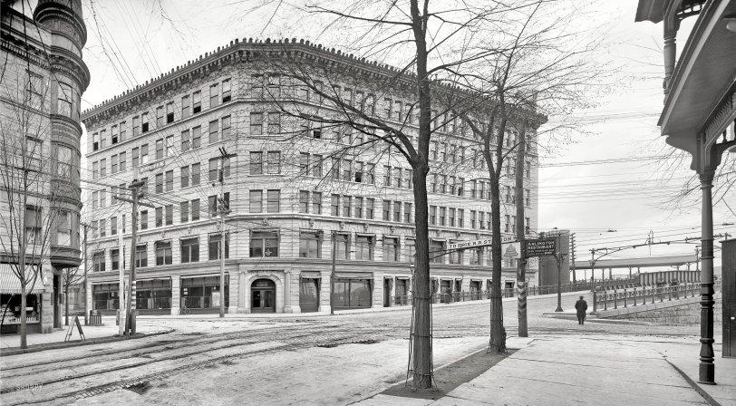 Swamp Root: 1905