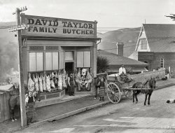 Family Butcher: 1910