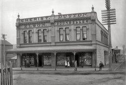 Toys & Fancy Goods: 1896
