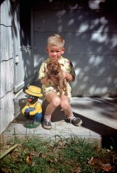 Two Kinds of Cute: 1951