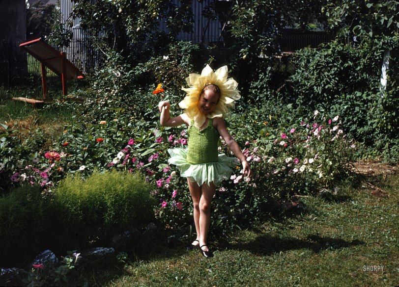 Flower Girl: 1955