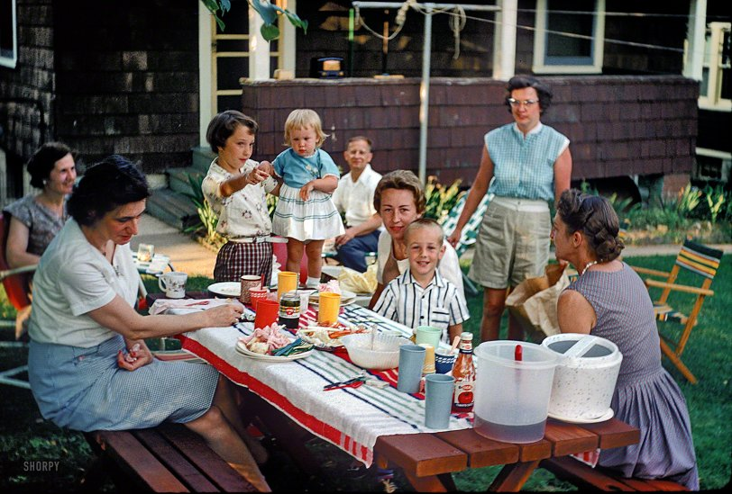 Backyard Picnic: 1960