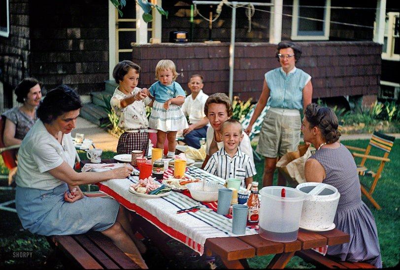 Backyard Picnic: 1960
