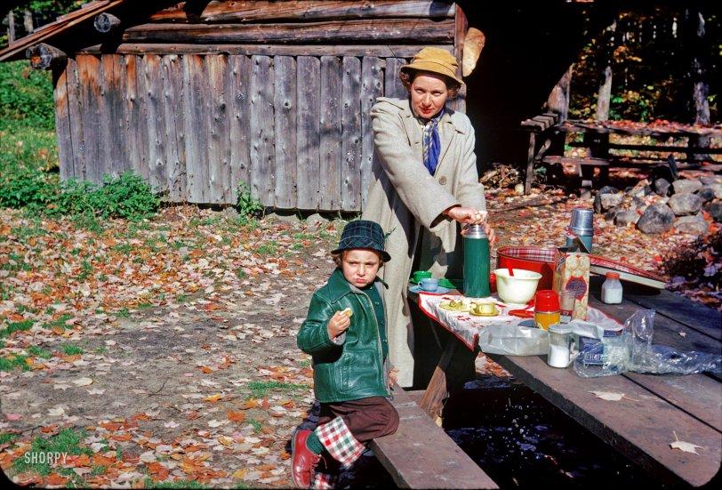 Ritzy Picnic: 1952