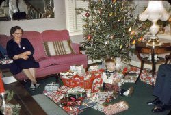 Present Perfect: 1958