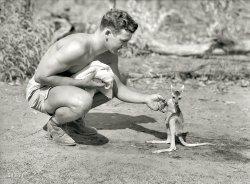 G.I. Joey: 1942