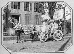 Flower Parade Float, Belleville, IL Town Fair: 1901