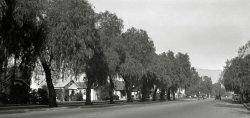 San Fernando Residential Street: 1931
