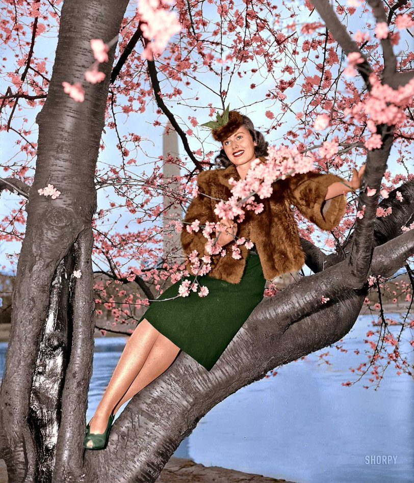 Signs of Spring (colorized): 1939