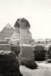 Grandfather at the Sphinx