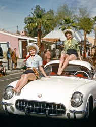 Corvette Cuties: 1955