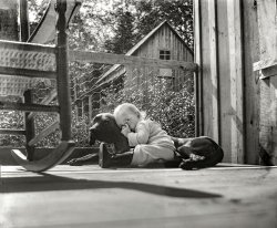 Pup-Napped: 1910
