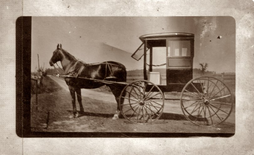 Amish Buggy early 1900's