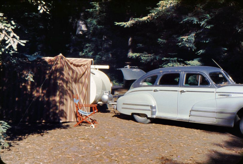 Forest Camp: 1950s