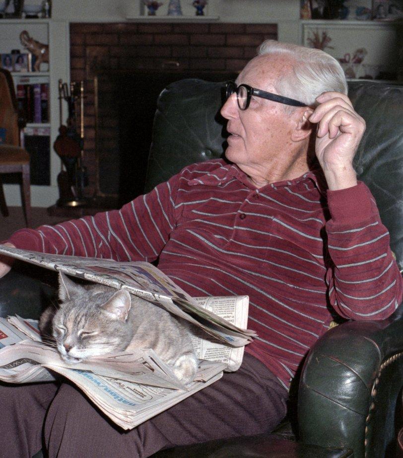 Cat Sandwich: 1984