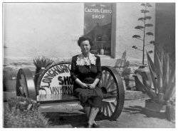Cactus and Curio Shop: c. 1940
