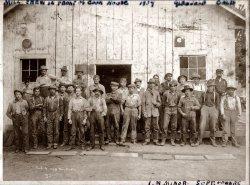 Logging: 1904