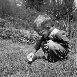 I Wanna Easter Egg: 1950