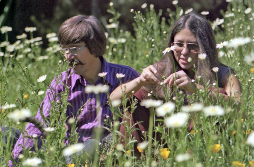 Flower Children: 1974