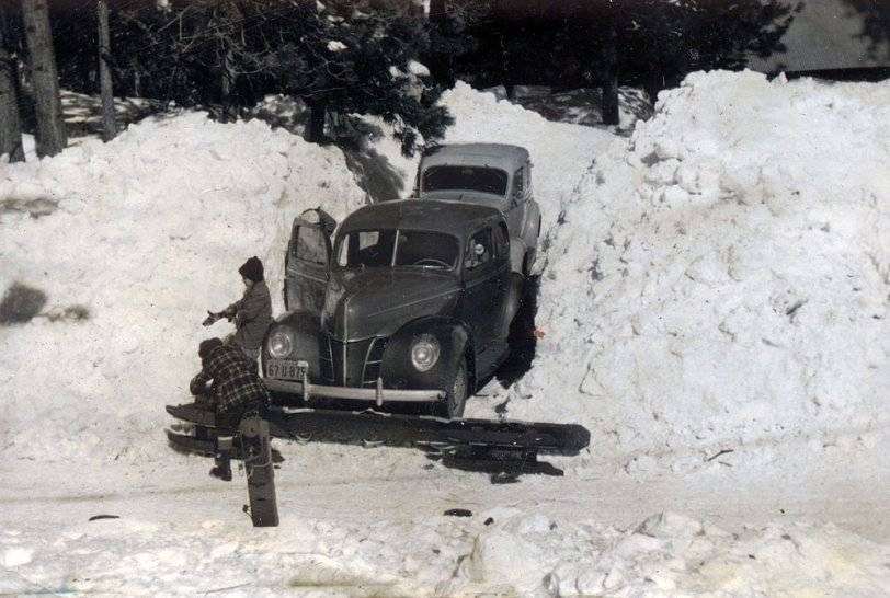 Fords in the snow
