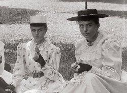 Picnic: 1893