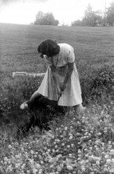 Water hazard, 1943
